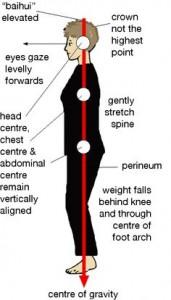 Tai-chi-posture